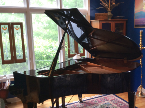 2002Schimmel5-6ebony-polish-grand